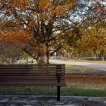 Rodzaje ławek parkowych