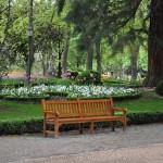 Jakie kupić ławki do parku?